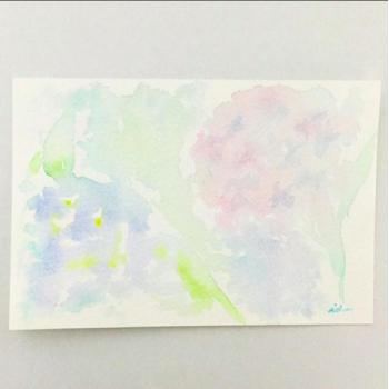 2017 〜はなじゅうたん〜変化〜