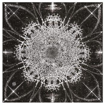 音楽標本 線譜『結晶化する音楽微生物』