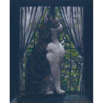 窓際猫(三毛)
