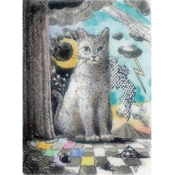 ランドスケープ猫