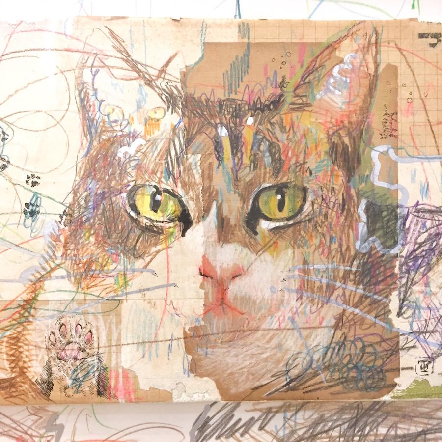 猫〜ドローイング〜2019-2