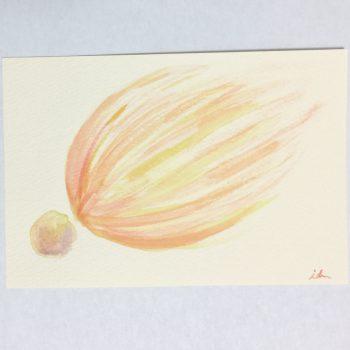 seed energy