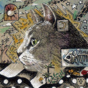 横顔猫(灰色猫)
