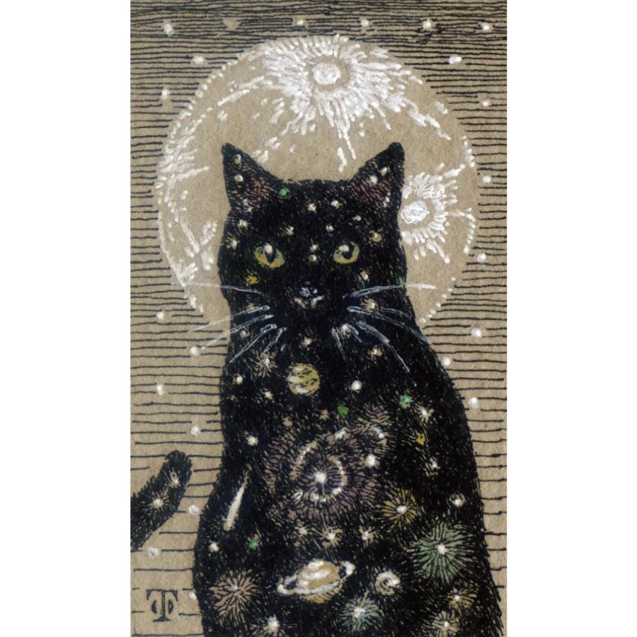 月と黒猫-1