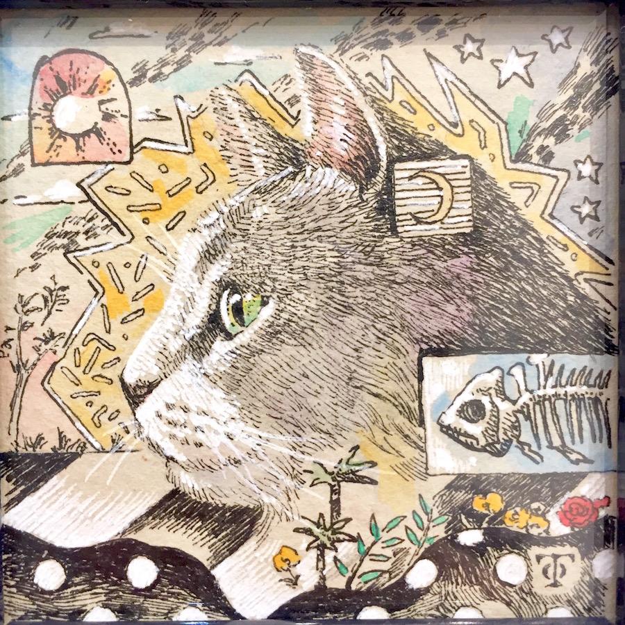 横顔猫(灰色猫)-4