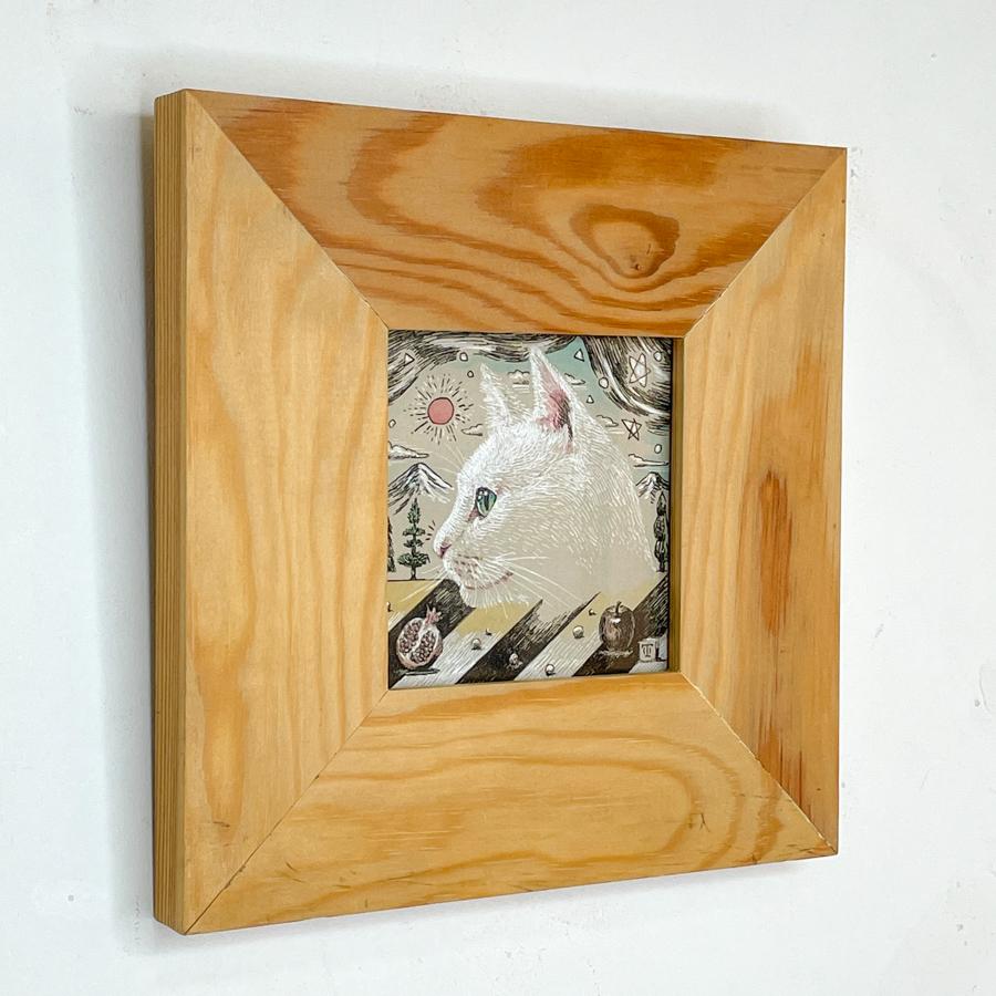 横顔猫(白猫)-3