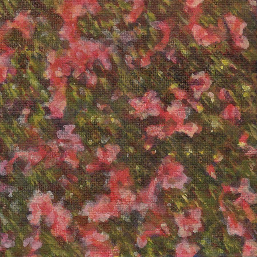 傍目の盛衰-1