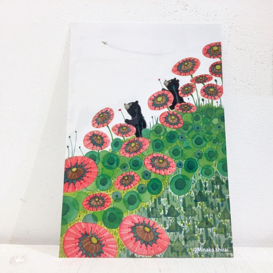白井美奈子カード全種セット-3