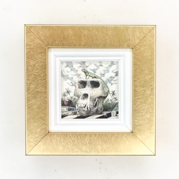 トカゲとゴリラの頭骨