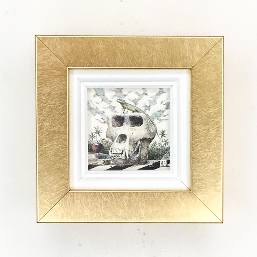 トカゲとゴリラの頭骨-1