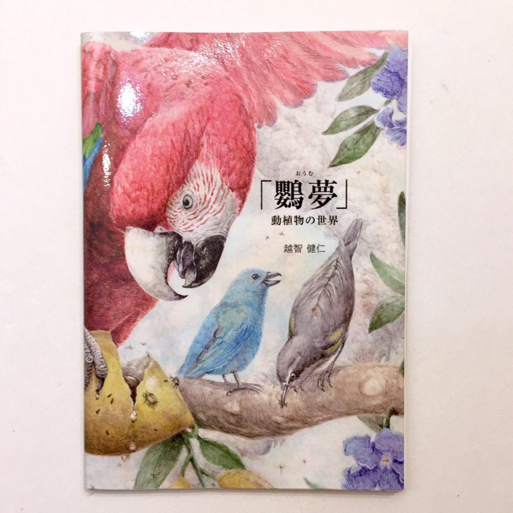 作品集「鸚夢」動植物の世界-1