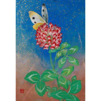 赤詰草と紋白蝶